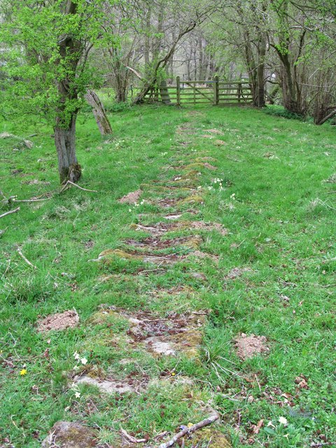 Bridleway to Egton Banks