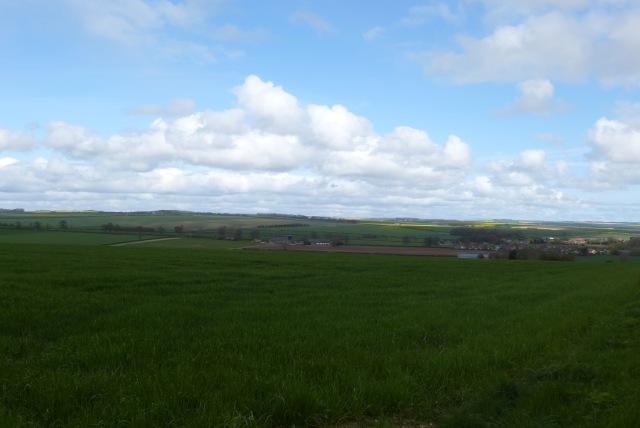 Looking over farmland towards Rudston