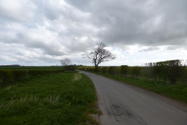 Woldgate from Burton Agnes Balk