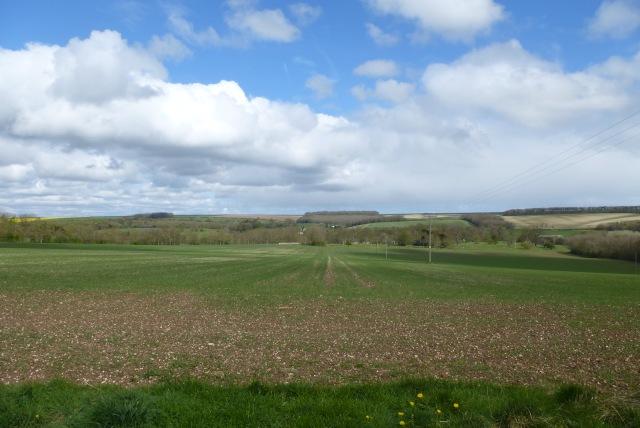 Bridleway to Boynton