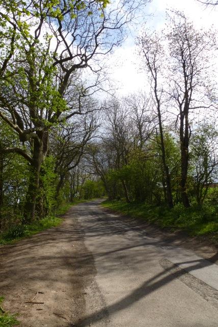 Woldgate near Fond Brig