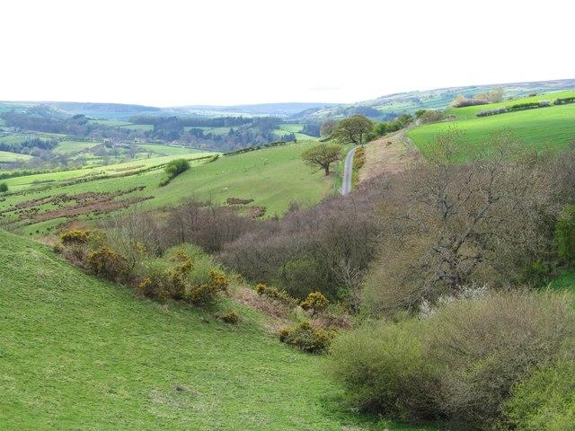 Eskdale view