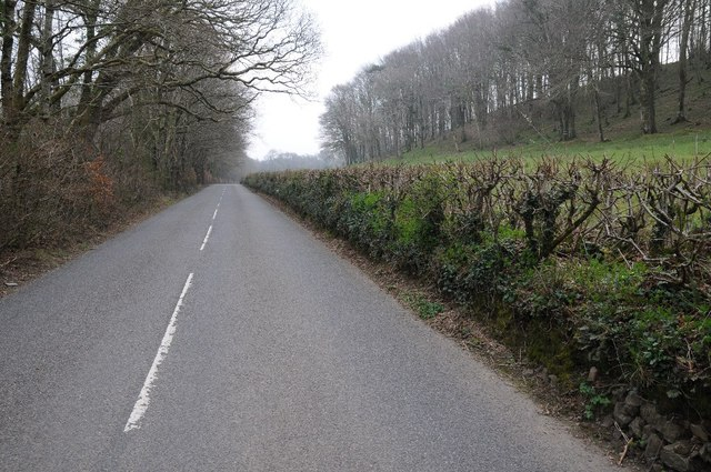 Road through the Yeo valley