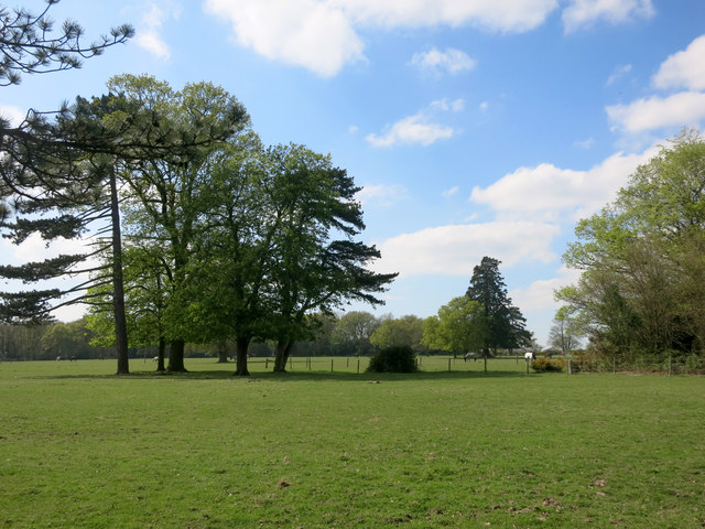 Parkland at Spencers Wood