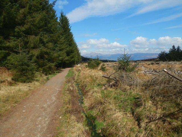 Path to Goukhill Muir