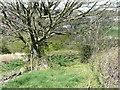 SE0723 : Sowerby Bridge FP079 (N4), Milner Royd Lane by Humphrey Bolton