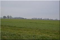 TG0705 : Farmland by N Chadwick