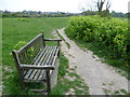 TR3749 : Path and seat at Hawkshill Freedown by Marathon