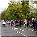 SE2144 : The leader's jersey, Tour de Yorkshire by Rich Tea