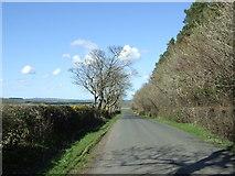 NU1604 : Heading towards Newton on the Moor by JThomas