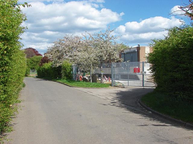 Walton Lane, Desborough Island