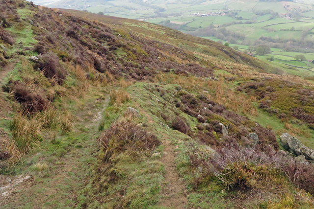 Track through area of old quarries, Rosedale
