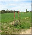 TF7800 : Barley crop field near Foulden by Evelyn Simak