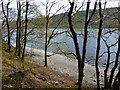 SD3094 : Coniston Water by John H Darch