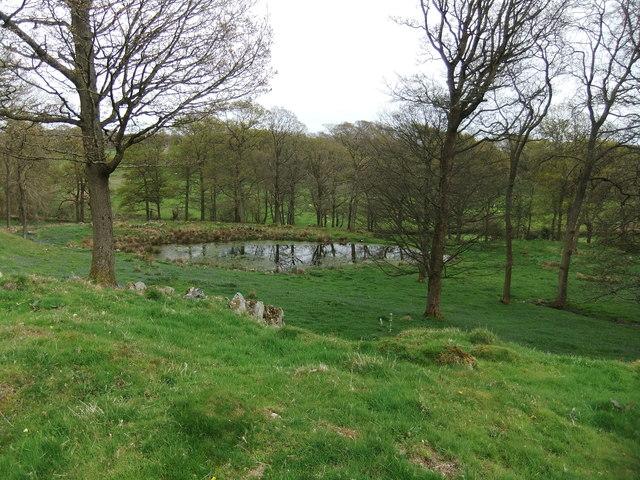 Pond at Burns Farm