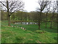 SD3679 : Pond at Burns Farm by David Brown