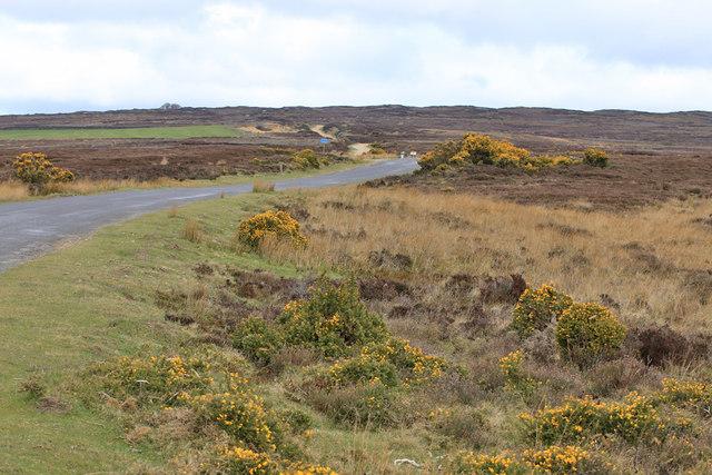 Moorland edge
