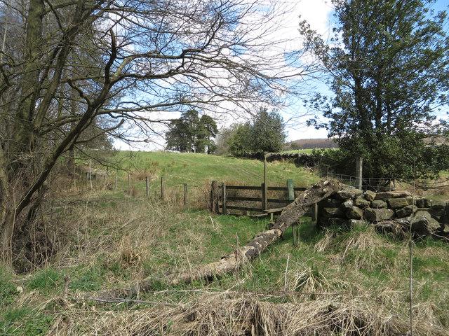 Start of public footpath to Lund Farm