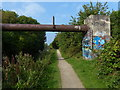 SP3580 : Pipebridge and towpath along the Coventry Canal by Mat Fascione