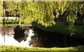 SU6948 : Upton Grey pond by Hugh Chevallier
