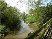 TF0611 : Footbridge and ford - West Glen River by Richard Humphrey