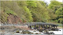 J4482 : Coastal path improvements, Helen's Bay - May 2015(1) by Albert Bridge