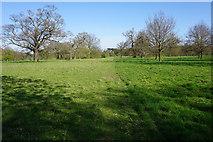 TL8162 : Footpath to Horringer by Bill Boaden
