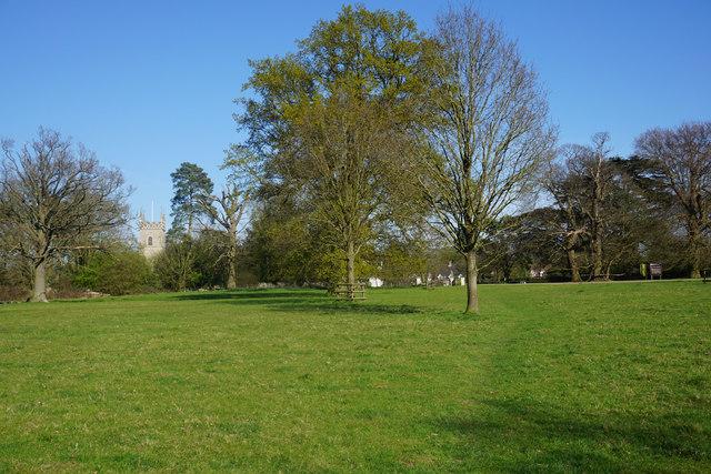 Path in Ickworth Park by Bill Boaden