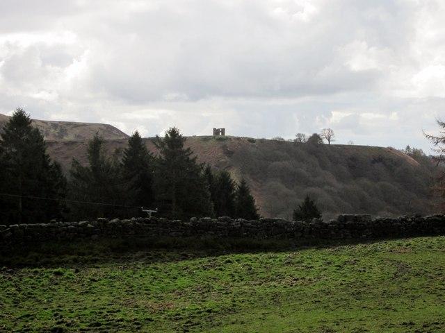 Rough  pasture  at  Gallock  Hill