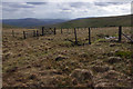 SD8695 : Fences above Fossdale Gill by Ian Taylor