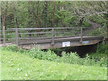 SO6302 : Bridge over the river by Gill