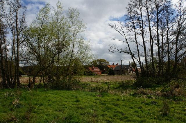 Grazing land near Itteringham Common