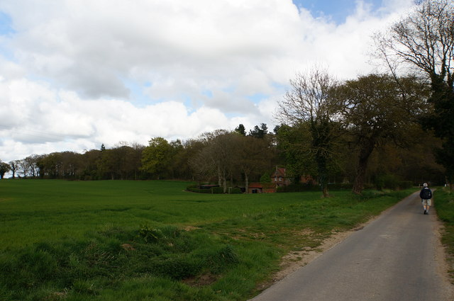 Road from Itteringham Common