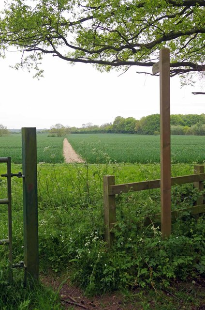 Footpath to Wyatt's Green by Glyn Baker