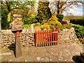 SD7152 : Queen Elizabeth II Silver Jubilee Garden, The Skaithe by David Dixon