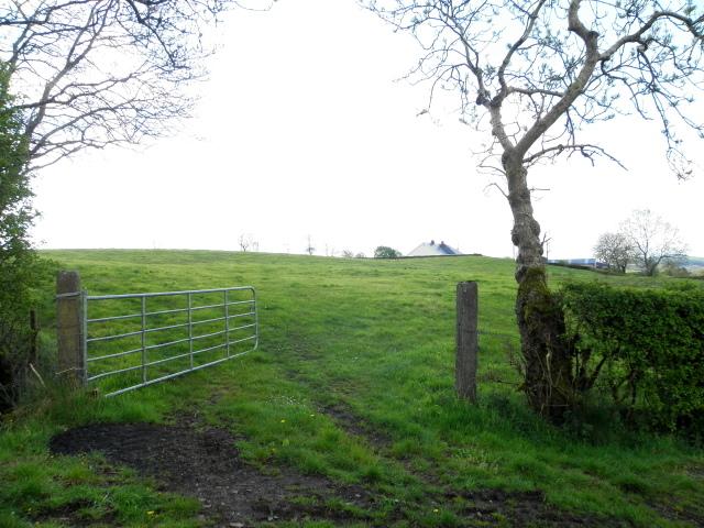 An open field, Garvaghy
