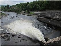 NN9357 : Pitlochry dam by Bill Kasman