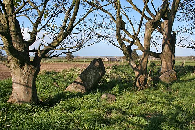 Netherton of Logie Recumbent Stone Circle (5)