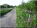 TL4605 : The driveway to Orchard Farm by Marathon