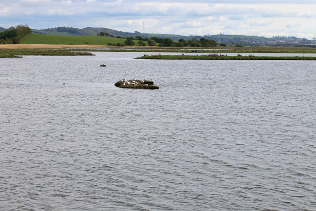 View from Eric Morecambe hide, RSPB Leighton Moss