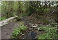 SE2309 : Thorpe Dike on Thorpe Lane by Ian S