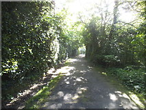 TQ1665 : The path to Stokes Field, Long Ditton by David Howard