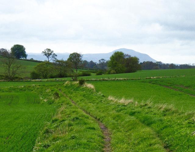 Track to St Mary's Farm