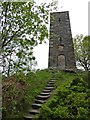 SK2563 : Steps up to Earl Grey's Tower by Steve  Fareham