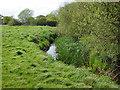 SU9961 : The River Bourne near Mimbridge by Alan Hunt