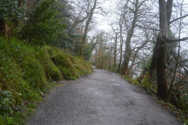 West Devon Way, Saltram