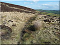 SE0227 : On the Calderdale Way, Midgley by Humphrey Bolton