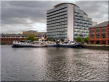 SJ8196 : Salford Quays, South Bay (Dock 6) by David Dixon