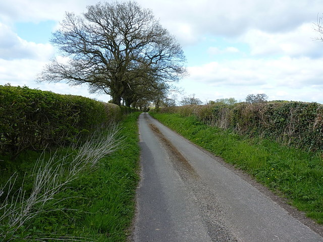 Following the Roman Road