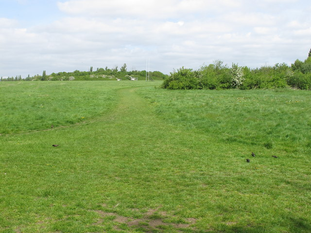 Wormwood Scrubs, view to copses